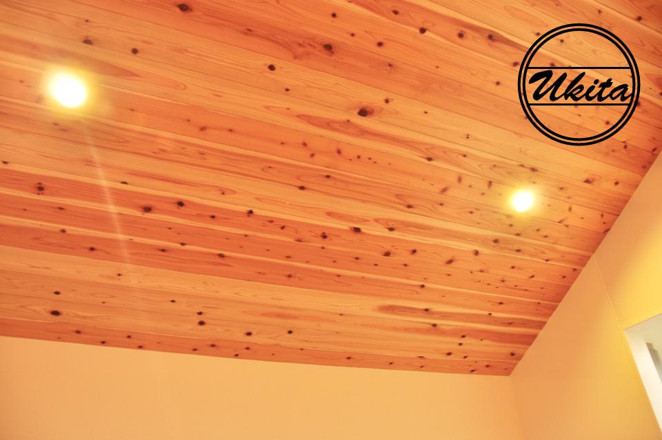 高槻市 工務店 新築・建替え・ガルバリウムのかっこいい家リビングの天井